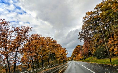 Orange, red and yellow leaves frame a country road.