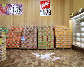 "Image: Brian Ulrich, Kenosha, Wisconsin, 2003 from the series ""Copia"""