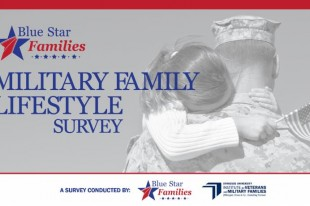militaryfamily survey