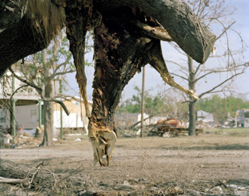 "Sayler/Morris, ""Extreme Weather Events I: Plaquemines Parish, Louisiana, 2005"""