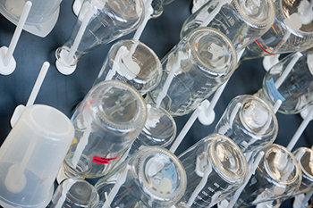 Lab supplies are one area where Whitman supply chain students have been evaluating whether the University can save money through exercising the economy of scale principle.