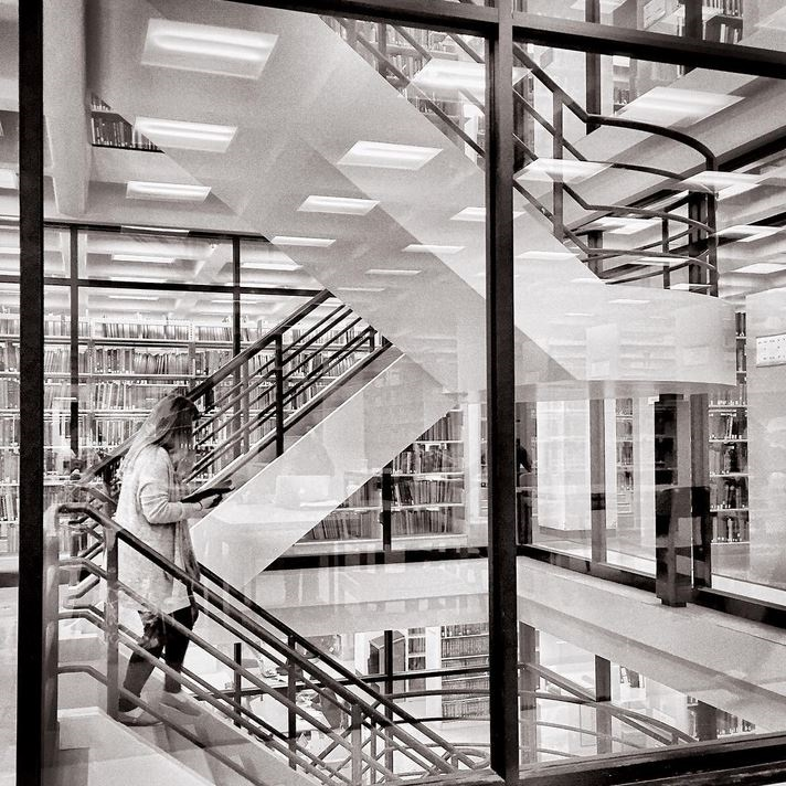 Staircase in Bird Library