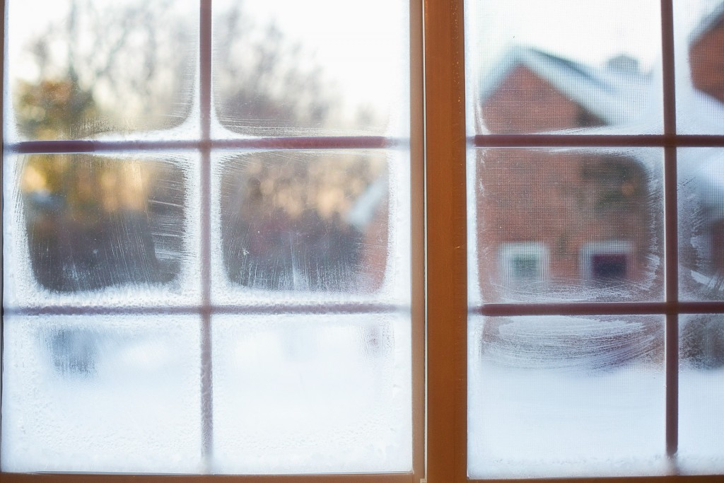frost-on-window-637531_1920