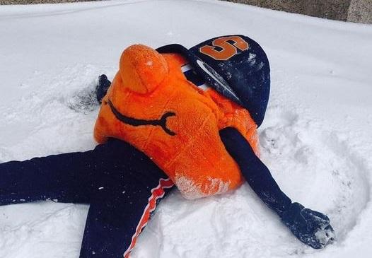 Otto in the snow.2