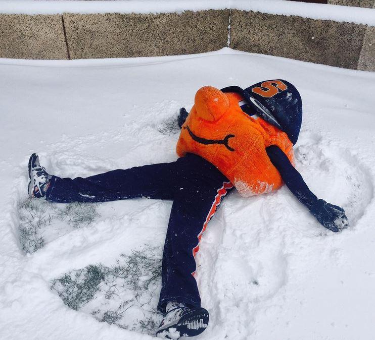 Otto in the snow