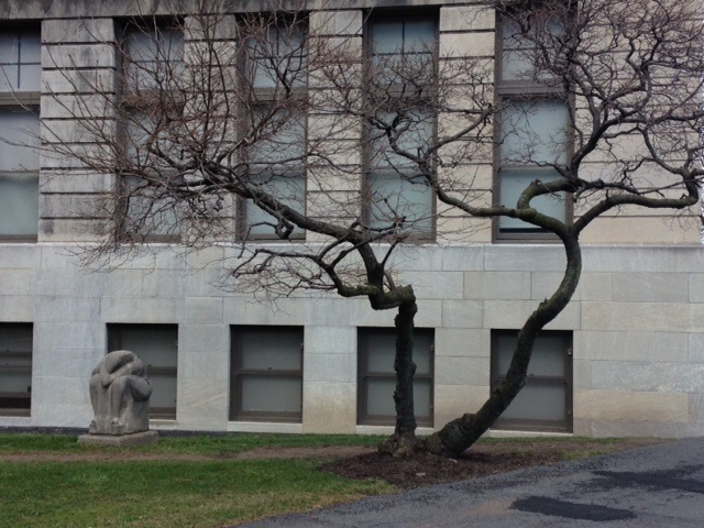 Photo of statue next to tree