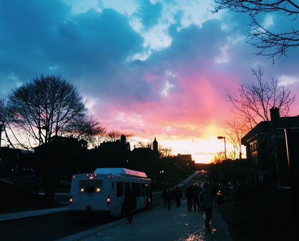 Sunset on University