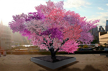 "A grove of eight of artist Sam Van Aken's ""Tree of 40 Fruit"" trees will be planted outside the Everson Museum."