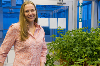 Kari Segraves in the greenhouse above the Life Sciences Complex