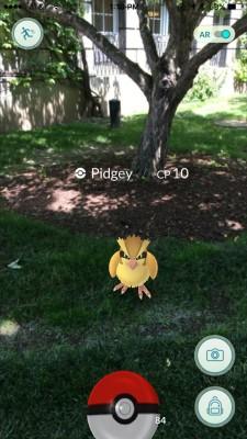 Pokemon character on grass