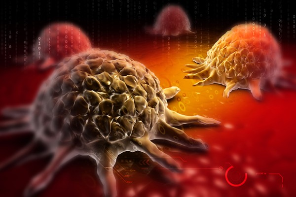 death receptors in cancer therapy cancer drug discovery