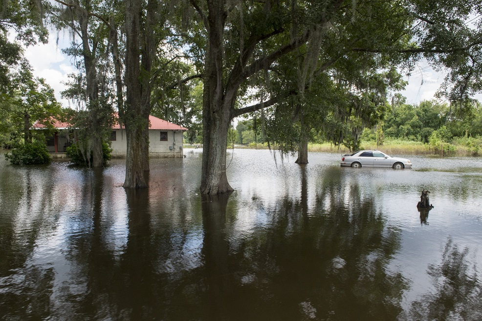 Standing floodwaters remain in an Ascension Parish neighborhood one week after the severe flooding disaster declaration in Louisiana. (Photo by J.T. Blatty/FEMA)