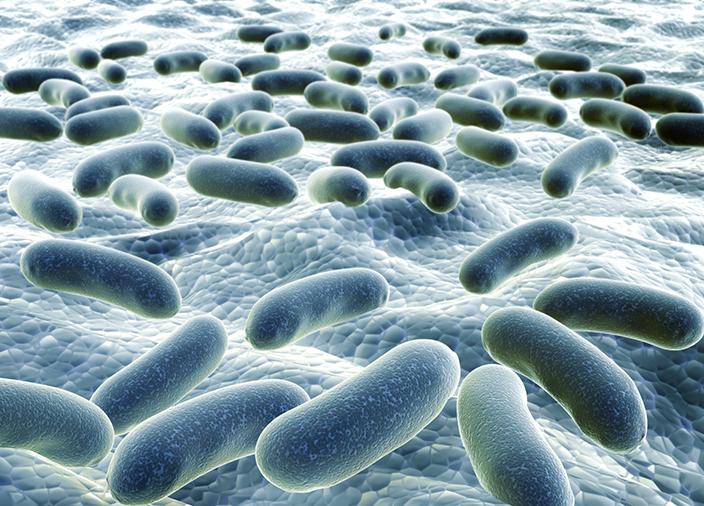 bacteria-shutterstock_227725930