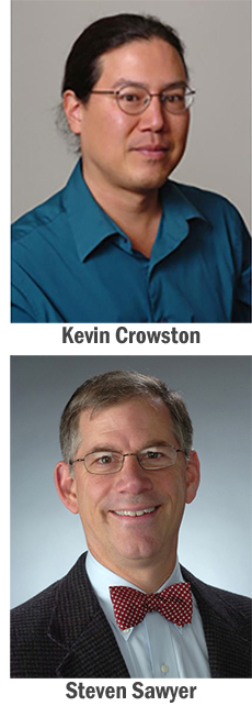 Kevin Crowston, Steven Sawyer