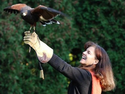 Woman with hawk