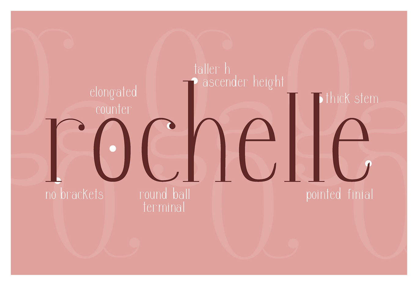 rochelle-ford-rochelle-specimen-panel