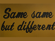 Same-Same