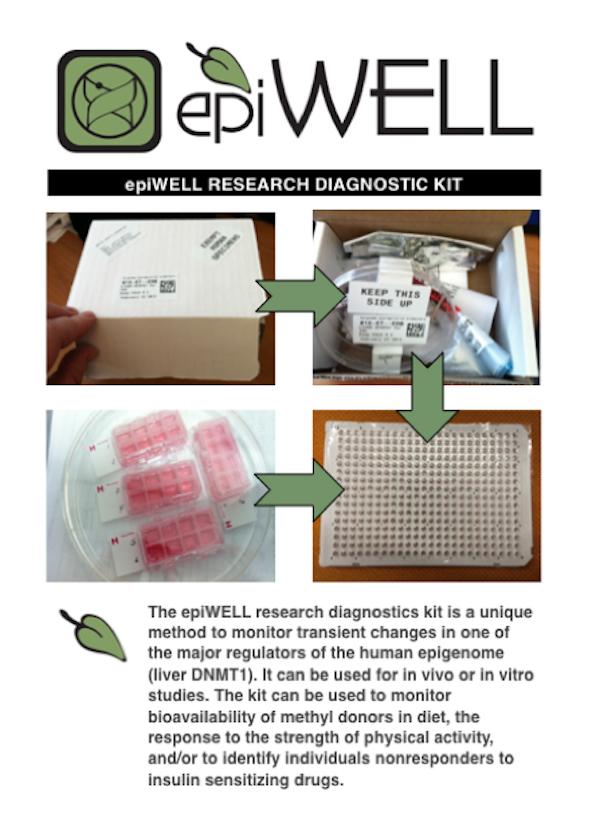 Epiwell