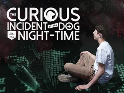 """Curious Incident"" poster"