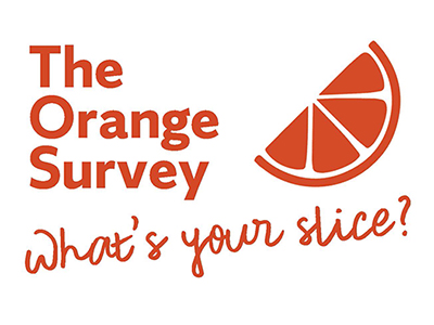 The Orange Survey