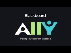 Black Board Ally logo