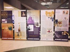 display of posters about women's suffrage