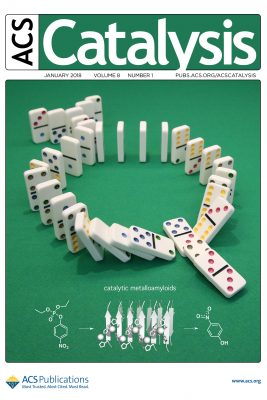 magazine cover with dominos