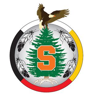 Native Student Program logo