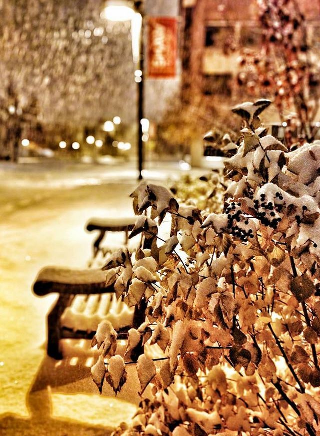 snow falling on chairs