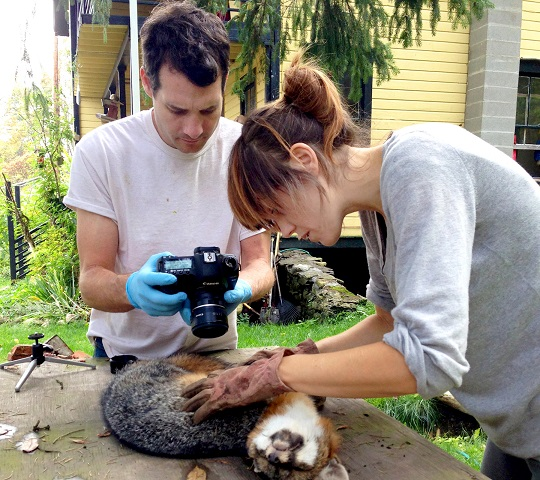 woman holding animal, man taking photo of animal