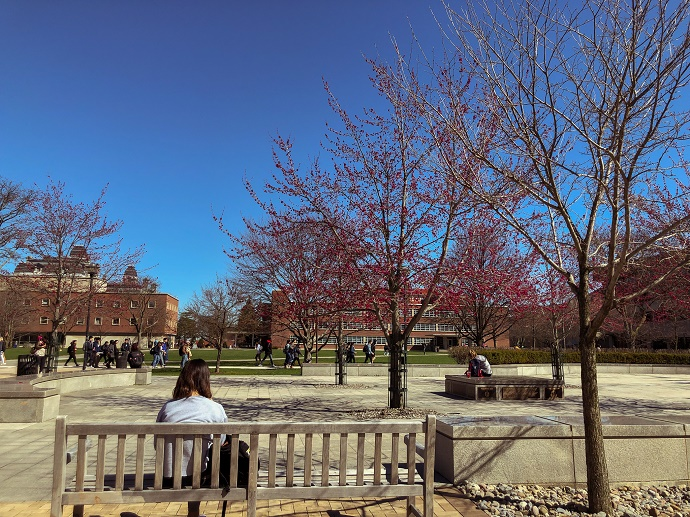 woman sitting on bench looking over Quad