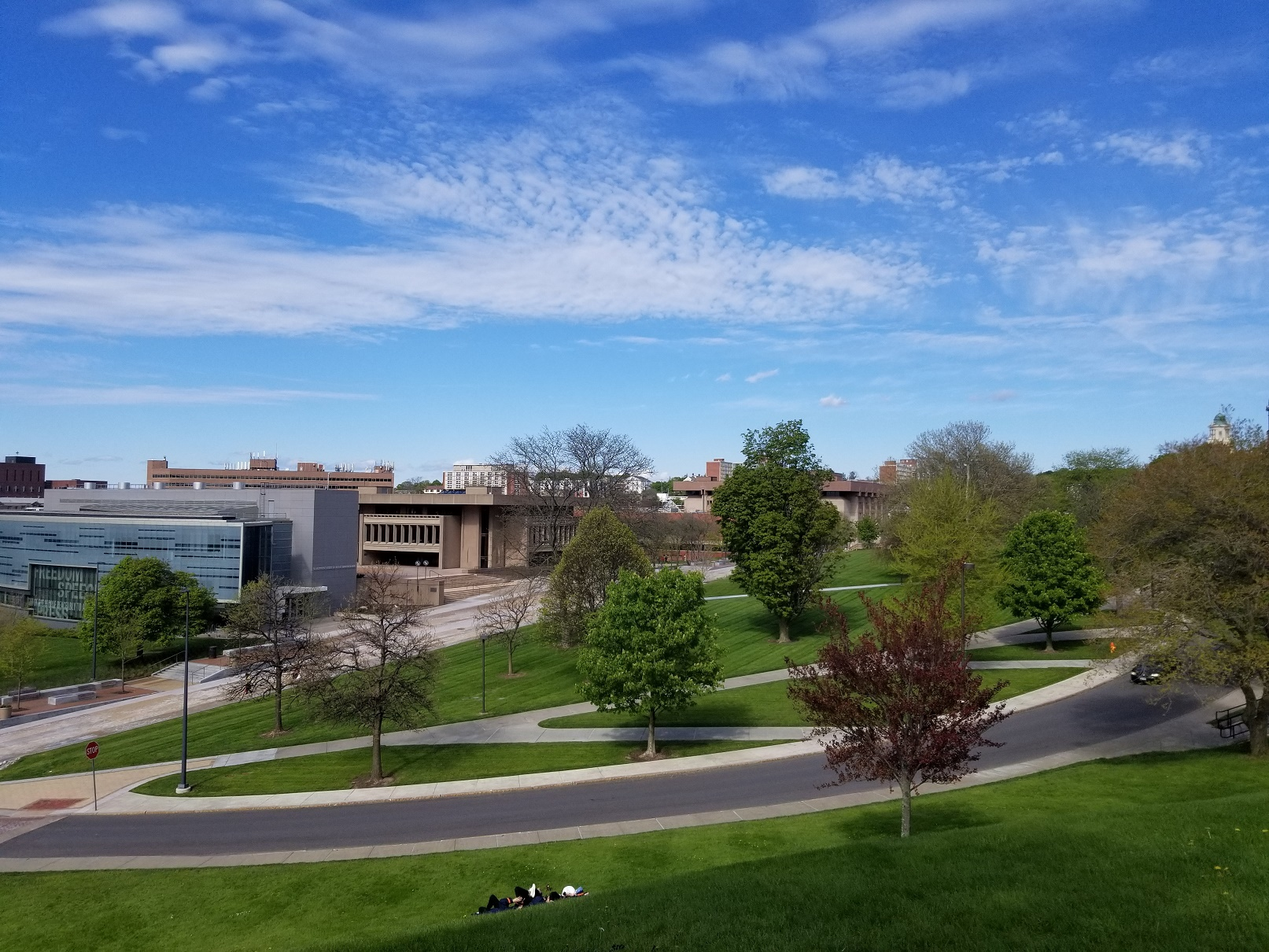 blue sky over campus buildings with trees in foreground
