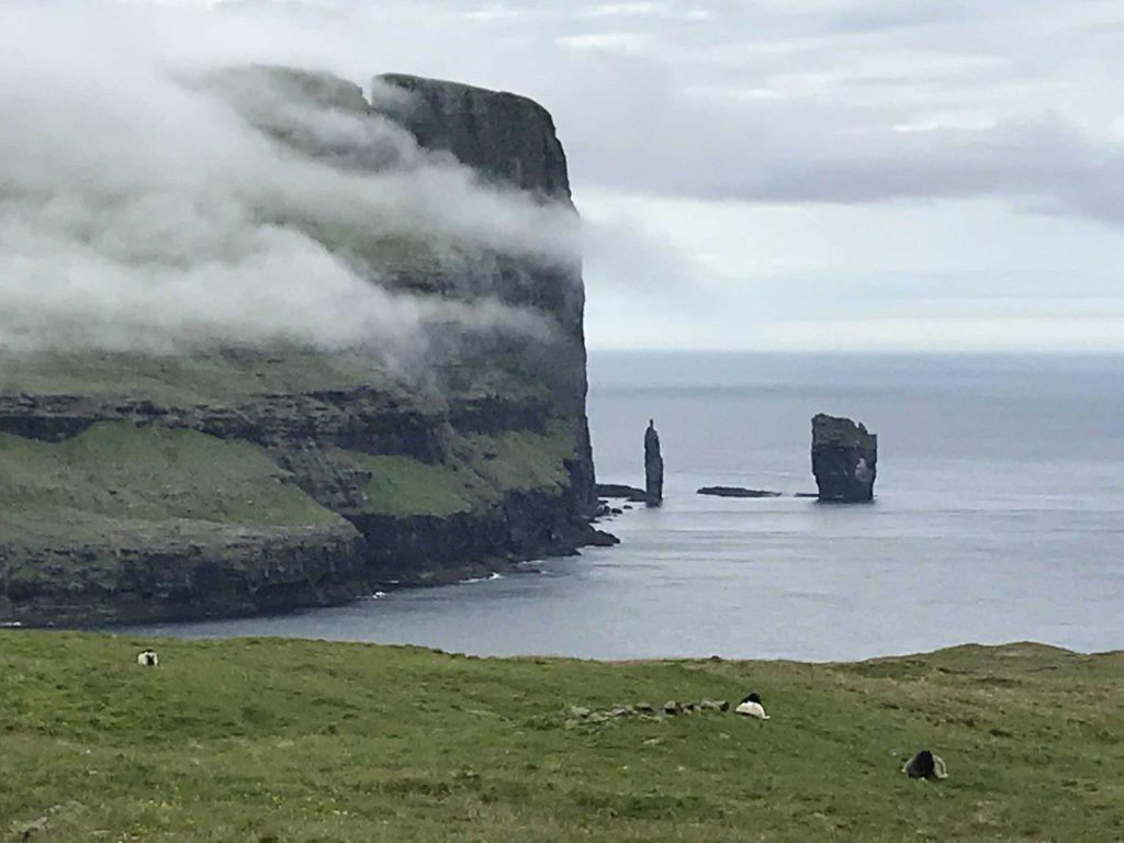 Cliff and coastline