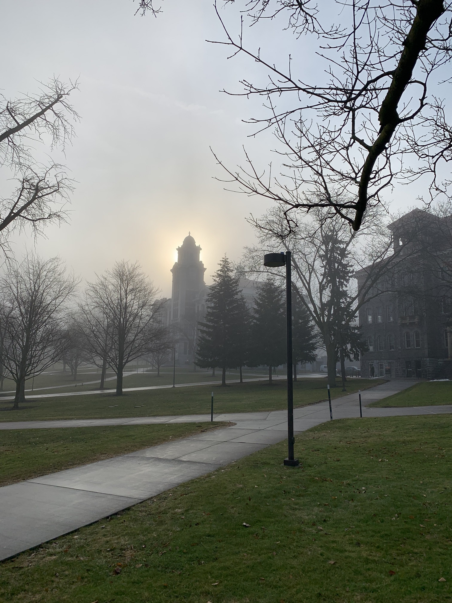 fog over campus buildings
