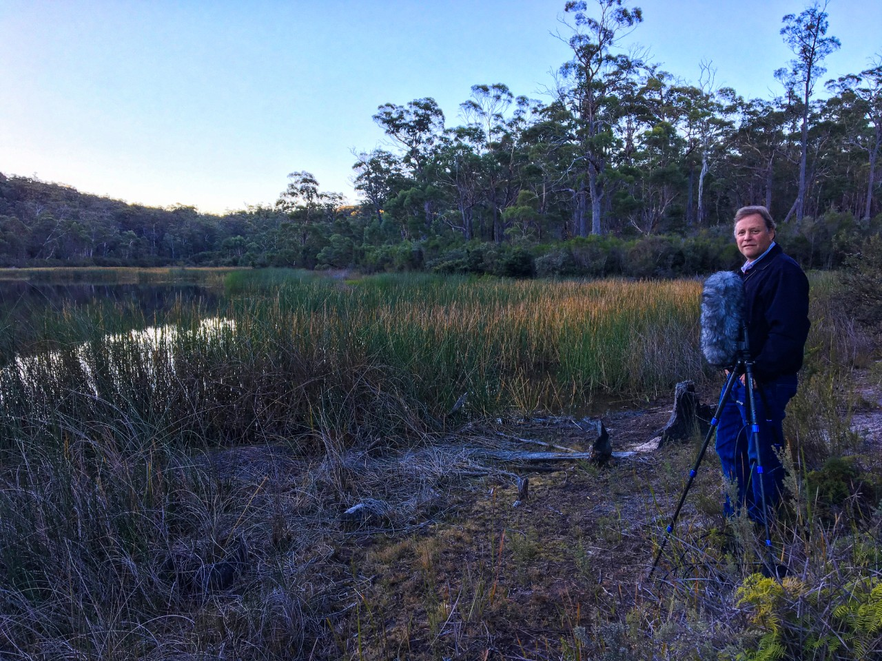 man standing beside a swamp