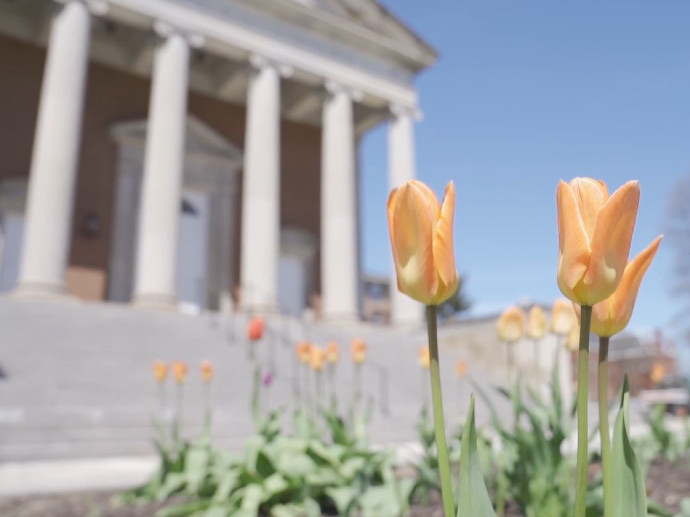 flowers in front of Hendricks Chapel