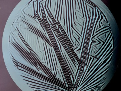 wrinkles on thin plastic films