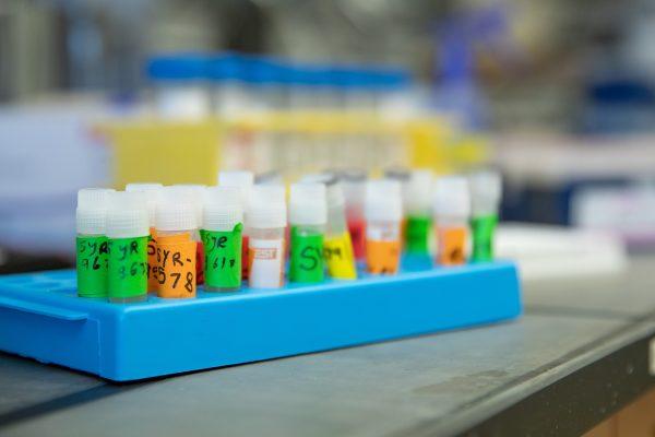 test tube vials