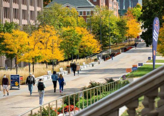 General campus scenery