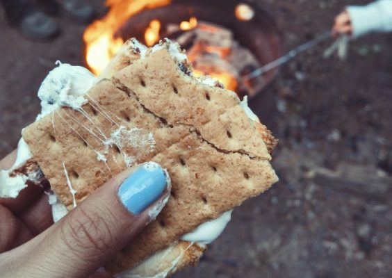 stock image of a person holding a s'more by a campfire