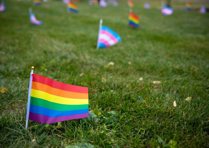 rainbow flags in ground